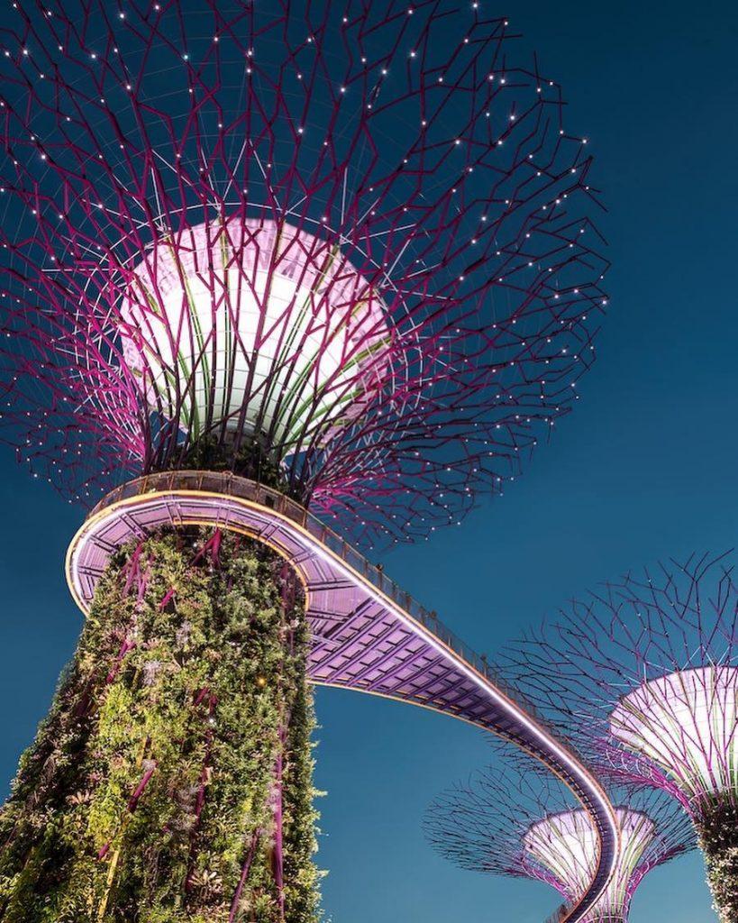 Gardens by the Bay, Singapure